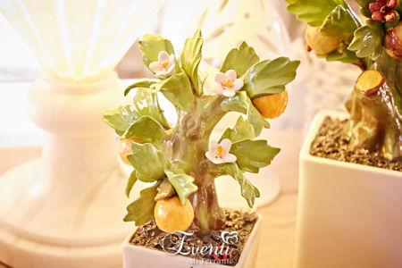 Bonsai profumatore medio in capodimonte con arance - Gli Alberelli
